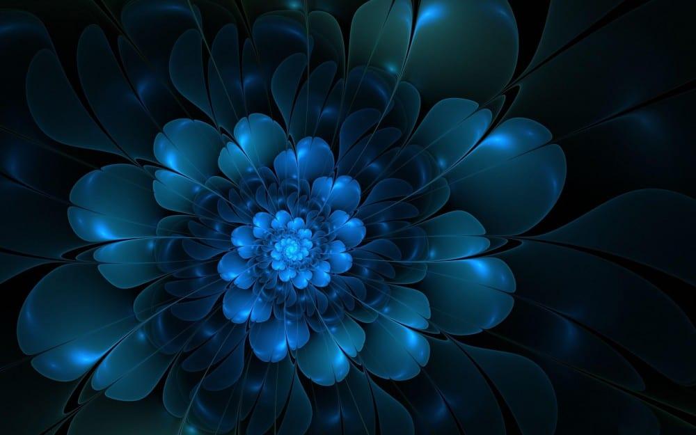 a_blue_flower-1532265-e1403774619650