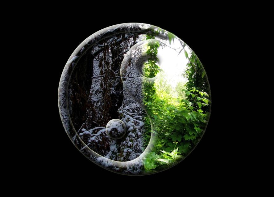yin-yang-shaman-lujan-matus